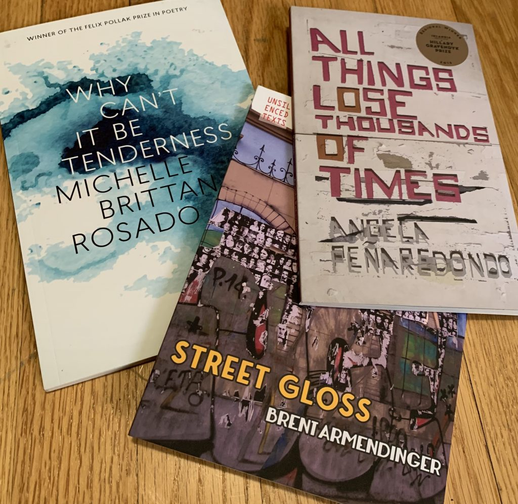three poetry books: why can't it be tenderness, all things lose thousands of times, street gloss